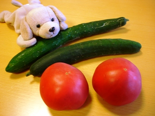 04_tomato_and_cucumber_070701
