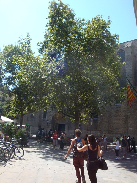17_20110813_to_21_travel_to_spain_1