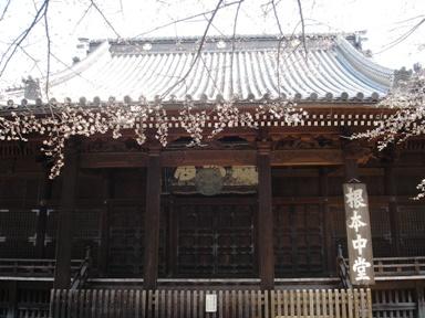 8_060325kaneiji_konpon_chuudou_028