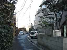 060129honngo_410_kado__027