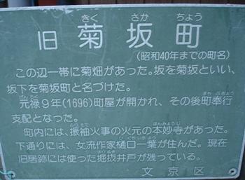 060129kikusakachou__013