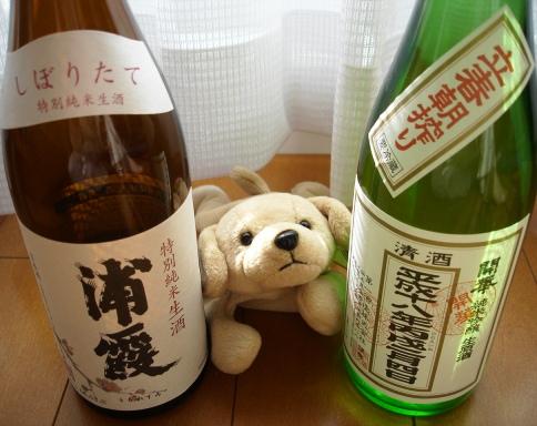 060209kaika_risshun_asashibori_and_urakasumi_tokubetsu_junmai_namazake__for_blog