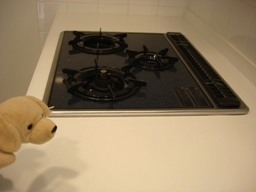 060210kitchen_corting_3__003