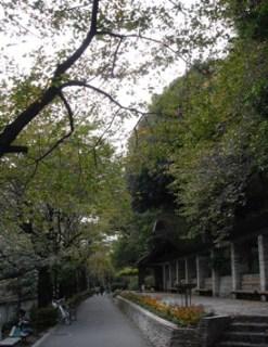 1_edogawabashi_kandagawa_sanpo_2051114_005