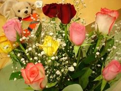 dsc01456_050214_valentines_flower