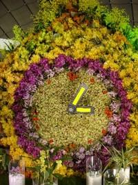 dsc01485_flower_time