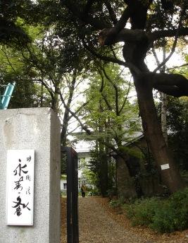 ei_sei_bunko_entrance_051114__015