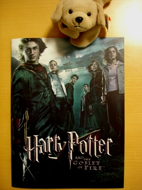 harry_potter__the_gobret_of_fire_051207___001