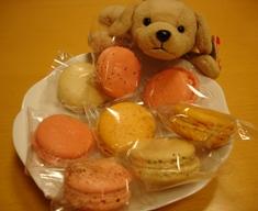 macarons_051005_
