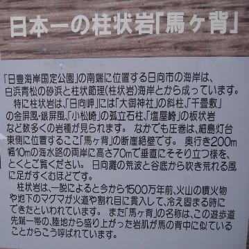 uma_ga_se_setumei_060101__063